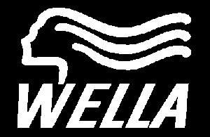 wella logo for slider